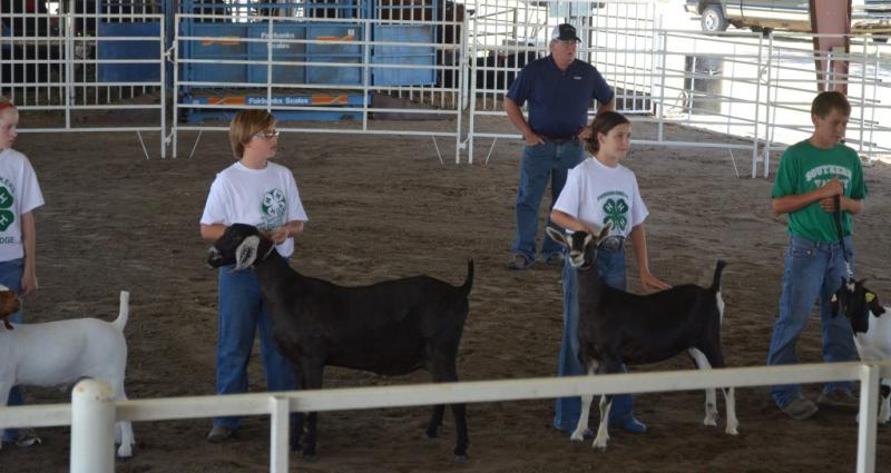 Dillon Sayer 2012 NE State Fair.jpg